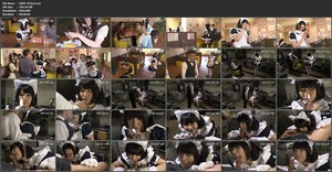 SDDE-453 Cat Ear Maid Cafe sc1