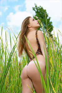 Elle-Hiding-In-The-Grass--o6ta546dkv.jpg
